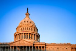 12 most popular funds with U.S. representatives