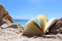 Top summer books recommended by successful financial advisers